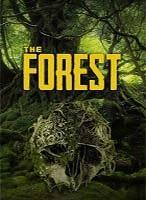 Die besten The Forest Server im Test & Slot-Preisvergleich!