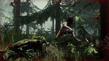 Miete dir jetzt einen der besten The Forest Server.